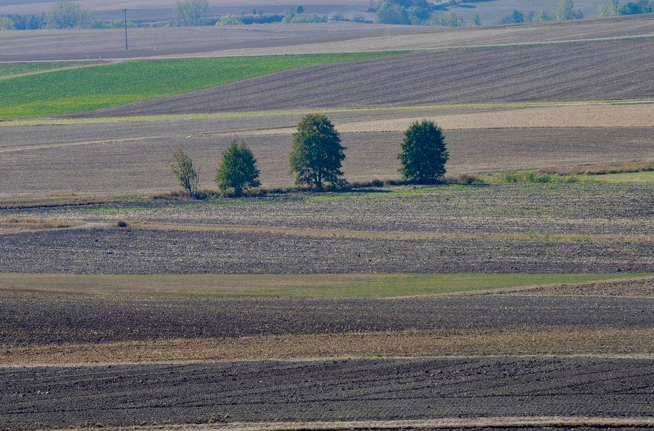 Ackerland Rumänien zur landwirtschaftlichen Nutzung